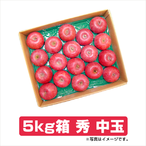 ふじりんご 5kg箱 秀 中玉