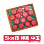 ふじりんご 5kg箱 特秀 中玉