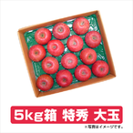 ふじりんご 5kg箱 特秀 大玉